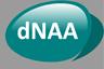 dNAA logo